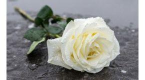 Les articles funéraires